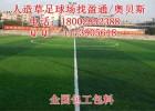 金寨寿县人造足球草坪,足球场人造草坪铺设