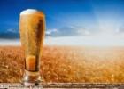 宁波进口德国啤酒清关代理