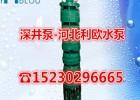 深井泵农田灌溉井水提升泵潜水多级泵175QJ63-44/13