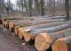 从西伯利亚进口木材怎么操作