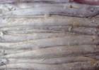 冷冻带鱼 进口带鱼批发 带鱼价格 连云港冷冻水产品批发厂家
