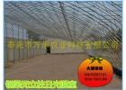 冬暖式温室大棚建设-全钢架日光温室--温室工程建设
