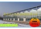 智能温室-玻璃智能温室
