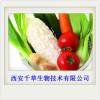 新鲜优质瓜粉