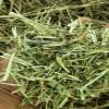 15年产 截断小包 青干草 羊草 优质放心草饲料