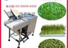 广东腾昇机械设备公司主营:洗菜机 去皮机 玉米脱粒机 豆芽机