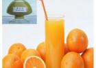 橙子提取抗菌消炎 抗病毒植物活性物质 橙皮苷 找浩翔生物
