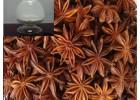 八角 小茴香提取分离抗菌消炎 抗病毒活性物质 莽草酸