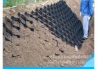 高强焊接蜂巢土工格室 坡体种草绿化固土路基专用土工格室