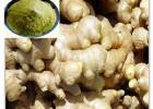 生姜水溶性活性物质健胃抗胃溃疡、利胆、保肝找宝鸡浩翔生物
