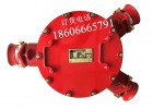 BHG1-200/10-2G高压接线盒厂家