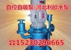 直连无密封自控自吸泵无泄漏立桶泵40WFB-A1双叶轮防腐泵