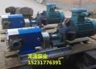 供应转子泵-规格TLB-5/1.0型不锈钢食品转子泵-现货