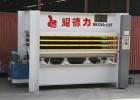 供应耀德力液压机 双贴面多层热压机 生态板三层120T热压机