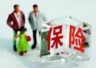 外地公司在深圳员工劳务派遣,外地驻深圳企业员工劳务派遣
