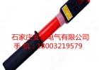 0.1-10KV袖珍型低压验电器