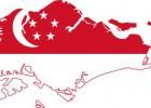 供应新加坡海运到门服务,专线服务