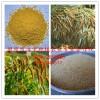 谷子米、小米子、黄小米、月子米、婴儿米粥