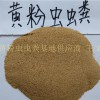 黄粉虫粪供应厂家低价直销
